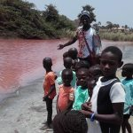 Golden Lead Factory in Gunjur (the Gambia) poisoned Bolong Fenyo Wildlife Reserve in 2017