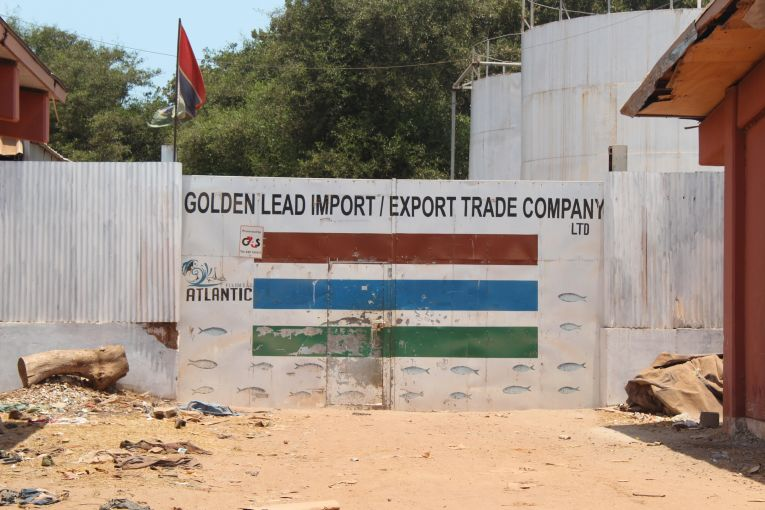 Gambians Fight Chinese Fishmeal Factory as Fish Prices Soar, Stocks Fall