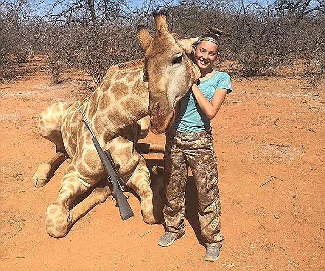 Aryanna Gourdin, 12, sparked outrage with pictures of her standing over the body of a giraffe she shot dead in Africa. Now she has been invited back to hunt lions
