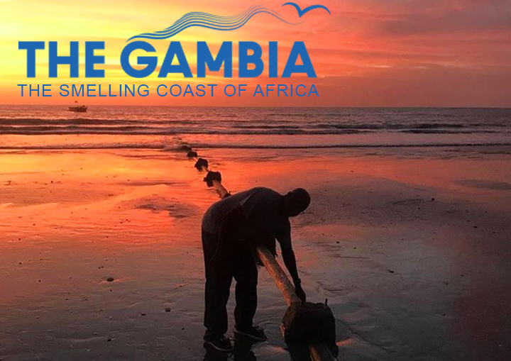 Gambi the smelling coast of africa -pipelines of nissim fishmeal factory in sanyang, the gambia