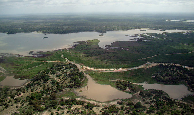 Tanzania: Lodge Closes As Loggers Move In Unexpected To Deforest Selous Game Reserve