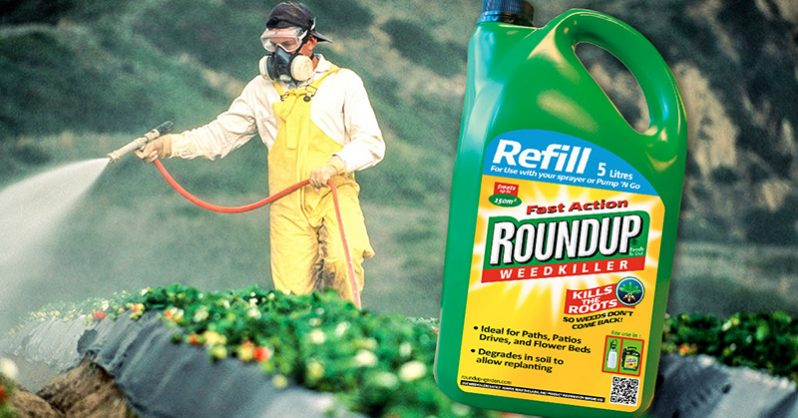 Monsanto Roundup cancer case