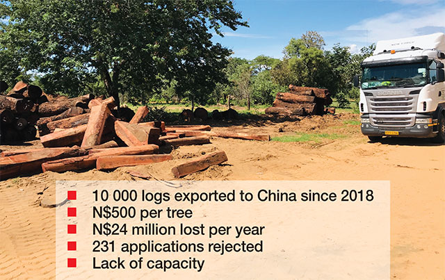 How Namibia Is Robbing Itself: 10.000 Logs Exported to China losing 24 million
