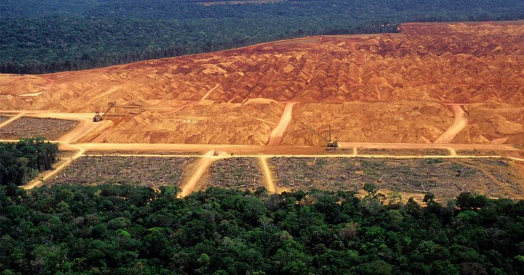 Deforestation Of The Amazon Has Reached 3 Football Fields Per Minute!