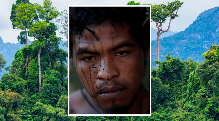 Tribal Leader Who Guarded the Amazon Rainforest Murdered by Illegal Loggers